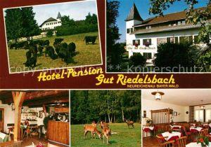 AK / Ansichtskarte Neureichenau Hotel Pension Gut Riedelsbach Wildpark Neureichenau