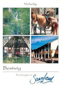 AK / Ansichtskarte Bestwig Wasserfall Reiterhof Berlar Rathaus Bestwig
