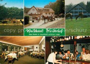 AK / Ansichtskarte Obersteinebach Hotel Pension Waldhotel Heiderhof Restaurant Wildpark Pferdewagen Obersteinebach