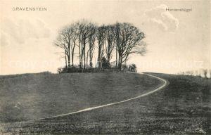 AK / Ansichtskarte Gravenstein Herzenshuegel Gravenstein