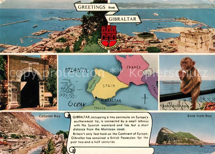 AK / Ansichtskarte Gibraltar Felsen Bucht Affe Gibraltar
