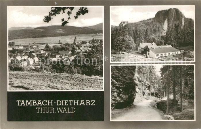 AK / Ansichtskarte Tambach Dietharz Panorama Felsen Waldpartie Thueringer Wald Tambach Dietharz