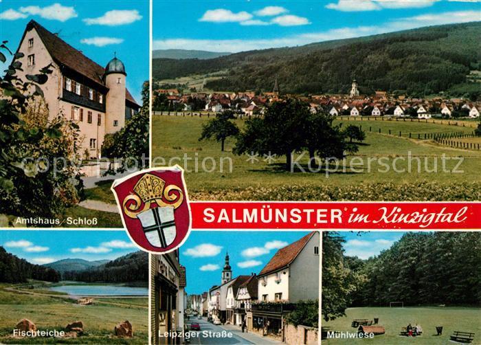 AK / Ansichtskarte Salmuenster_Bad_Soden Amtshaus Schloss Fischteich Muehlwiese Leipziger Strasse Landschaftspanorama Kinzigtal Salmuenster_Bad_Soden 0