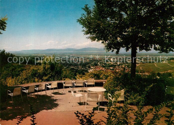 AK / Ansichtskarte Badenweiler Ausblick auf die Vogesen Landschaftspanorama Badenweiler