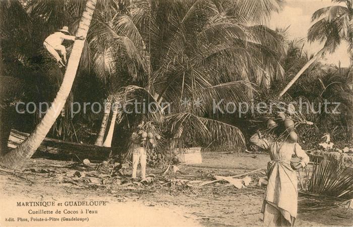 AK / Ansichtskarte Martinique Guadeloupe Cueillettede Cocos a leau Martinique