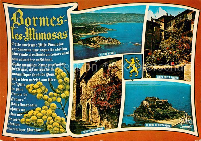 AK / Ansichtskarte Bormes les Mimosas Le Cap Benat Vieux puits Fleuri Coin Pittoresque Le Fort de Brecancon Bormes les Mimosas