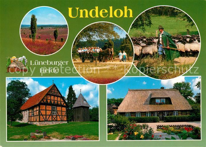 AK / Ansichtskarte Undeloh im Naturschutzpark Lueneburger Heide Pferdewagen Schaefer Fachwerkhaus Reetdachhaus Undeloh