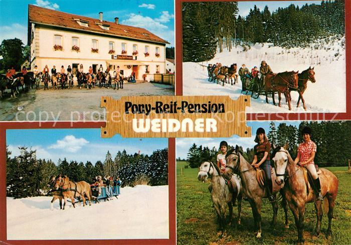 AK / Ansichtskarte Marktleugast Steinbach Pony Reif Pension Weider Pferdeschlitten Marktleugast