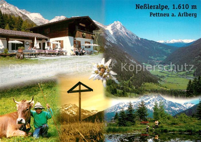 AK / Ansichtskarte Pettnau_Arlberg Nessleralpe Alm Jausenstation Alpenpanorama Pettnau Arlberg