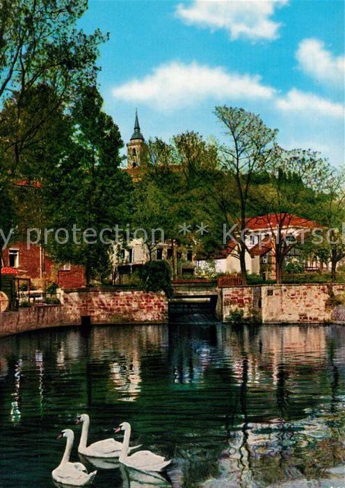 AK / Ansichtskarte Siegburg Schwanenteich Siegburg