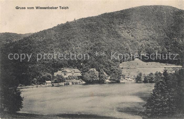 AK / Ansichtskarte Bad_Lauterberg Wiesenbeker Teich Bad_Lauterberg