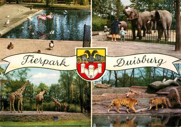 AK / Ansichtskarte Zoo Tierpark Duisburg Flamingo Elefant Giraffe Tiger  Zoo