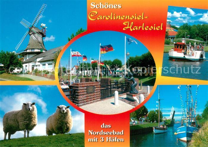 AK / Ansichtskarte Carolinensiel Harlesiel_Ostfriesland Windmuehle Faehrschiff Hafen Schafe Carolinensiel Harlesiel