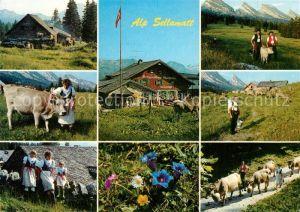 AK / Ansichtskarte Alt_St_Johann Auf Sellamatt mit Alpfahrt Alt_St_Johann