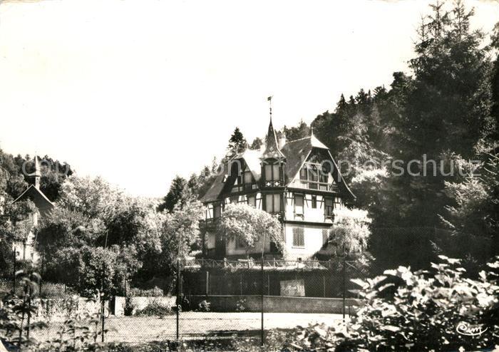 AK / Ansichtskarte Hohwald_Le Villa Bois Joli Hohwald_Le