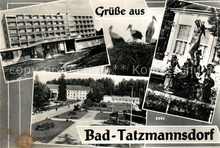AK / Ansichtskarte Bad_Tatzmannsdorf_Burgenland Herz Frauen und Rheumaheilbad Brunnenfiguren Bad_Tatzmannsdorf