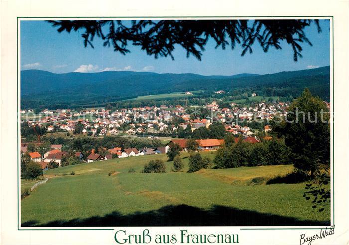 AK / Ansichtskarte Frauenau  Frauenau 0