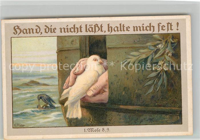 AK / Ansichtskarte Tauben Kuenstlerkarte G. Roeder Litho  Tauben