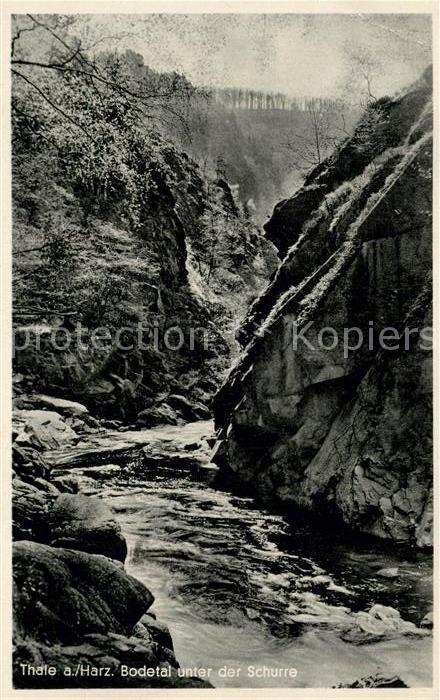 AK / Ansichtskarte Thale_Harz Bodetal unter der Schurre Thale_Harz