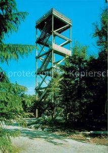 AK / Ansichtskarte Bischofsreut_Haidmuehle Aussichtsturm auf dem Haidl Bischofsreut_Haidmuehle