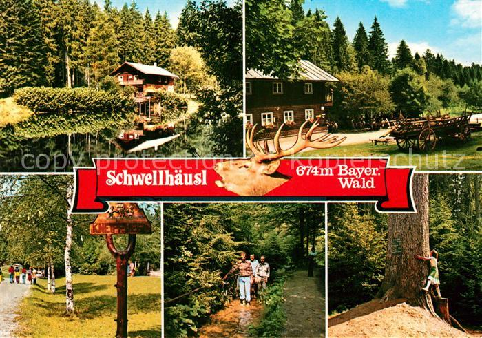 AK / Ansichtskarte Bayerisch_Eisenstein Zwieselener Waldhaus Ausflugsgaststaette Cafe Schwellhaeusl Bayerisch_Eisenstein