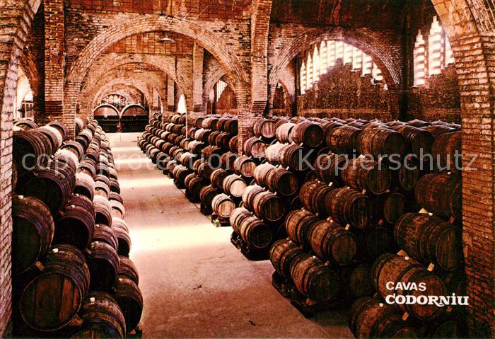 AK / Ansichtskarte Wein Cavas Codorniu Weinkeller Bodega  Wein