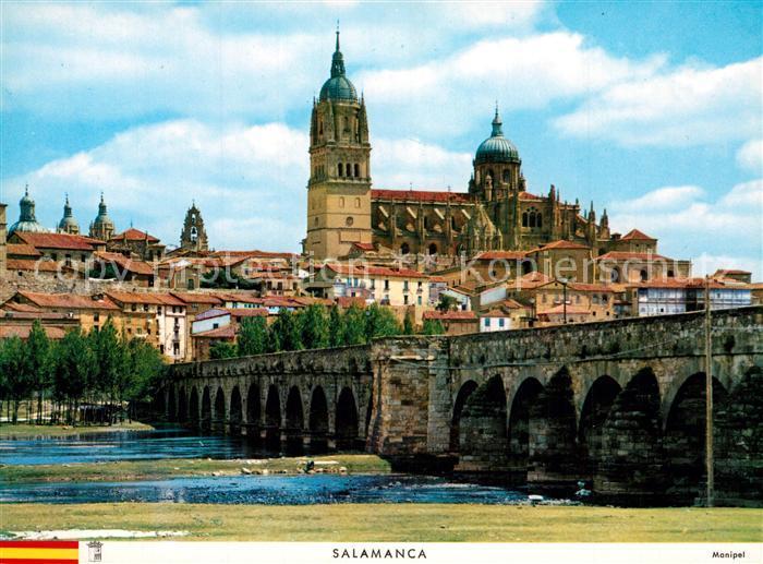 AK / Ansichtskarte Salamanca Vista parcial y puente romano Salamanca