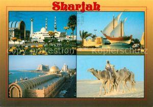 AK / Ansichtskarte Sharjah_ Teilansichten Kamele Sharjah_