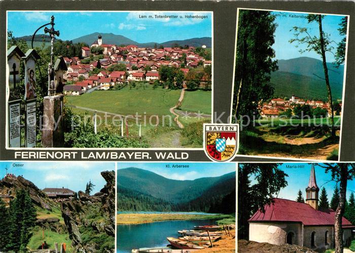 AK / Ansichtskarte Lam_Oberpfalz mit Totenbretter und Hohenbogen Osser Kl Arbersee Maria Hilf Lam_Oberpfalz