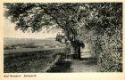Bild zu Bad_Nenndorf Park...