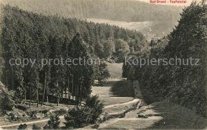 AK / Ansichtskarte Bad_Grund Teufelstal Bad_Grund