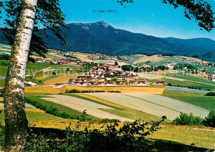 AK / Ansichtskarte Lam_Oberpfalz mit Gr Osser Lam_Oberpfalz