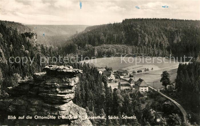 AK / Ansichtskarte Bielatal Ottomuehle  Bielatal