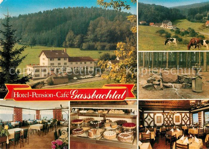 AK / Ansichtskarte Gras Ellenbach Hotel Gassbachtal Gras Ellenbach
