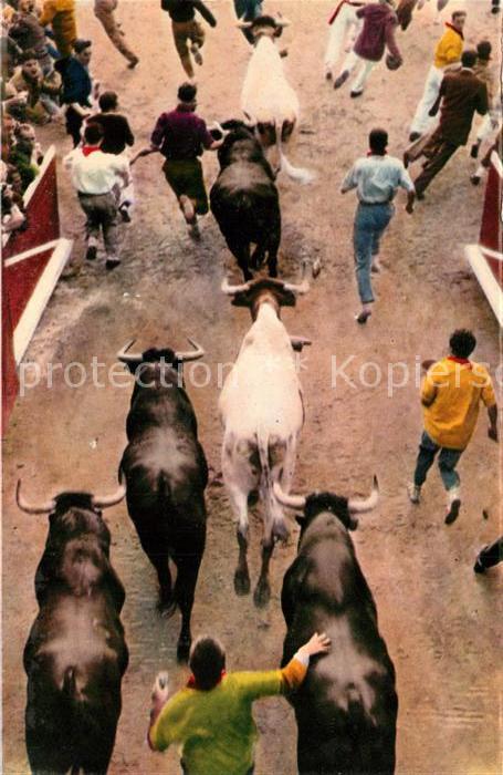 AK / Ansichtskarte Pamplona_Navarra Los toros entran en la plaza con los mozos unidos a ellos Pamplona Navarra