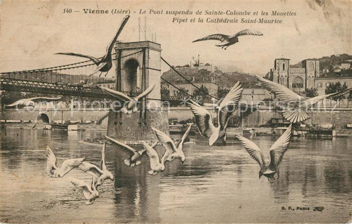 AK / Ansichtskarte Vienne_Isere Pont suspendu de Sainte Colombe et les Mouettes Pipet et la Cathedrale Saint Maurice Vienne Isere