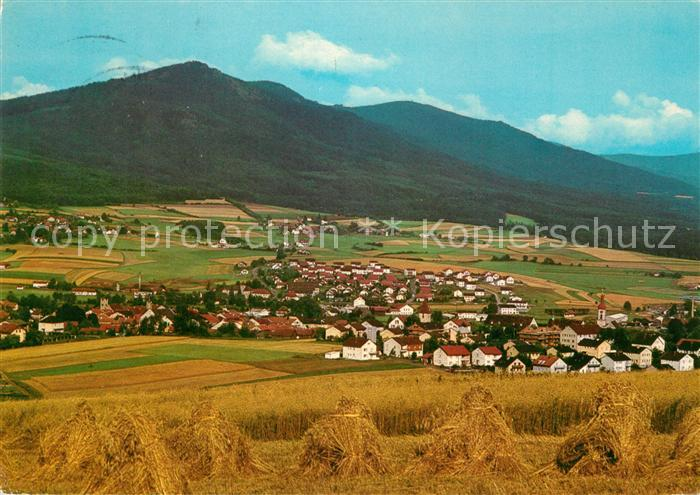 AK / Ansichtskarte Koetzting Kaltersberg Koetzting