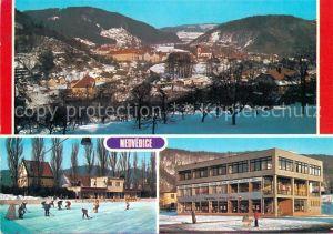 AK / Ansichtskarte Nedvedice_Okres_Venkov Panorama Wintersport Eishockey Nedvedice_Okres_Venkov