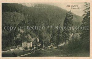 AK / Ansichtskarte Bad Reinerz Waldmuehle Bad Reinerz
