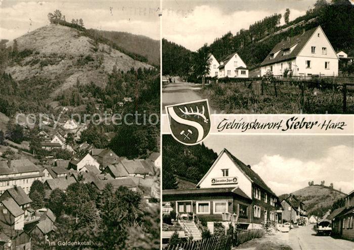 AK / Ansichtskarte Sieber Goldenketal  Sieber