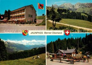 AK / Ansichtskarte Jaunpass Hotel des Alpes Panorama Simmental Gastlosen Sportbazar Jaunpass