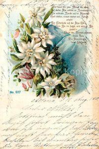 AK / Ansichtskarte Edelweiss Gedicht Litho Edelweiss
