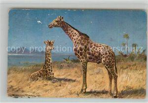 AK / Ansichtskarte Giraffe Kuenstlerkarte Giraffe