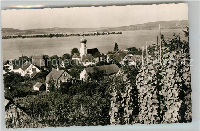 AK / Ansichtskarte Allensbach_Bodensee mit Blick auf Insel Reichenau Allensbach_Bodensee 0