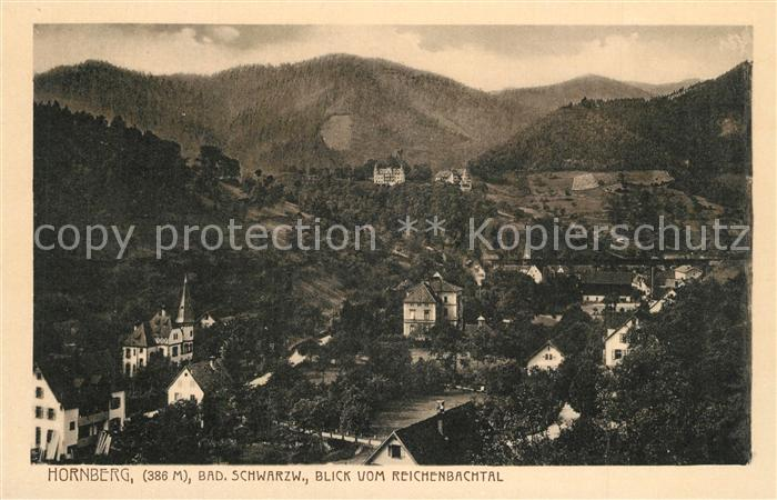 AK / Ansichtskarte Hornberg_Schwarzwald Panorama Blick vom Reichenbachtal Hornberg Schwarzwald