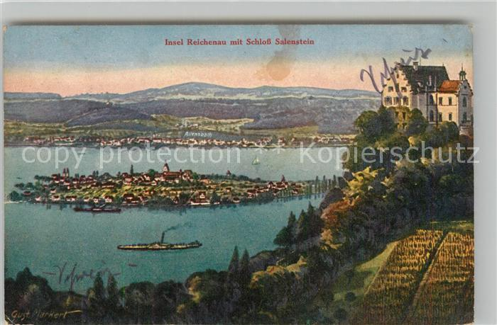 AK / Ansichtskarte Salenstein_TG Schloss mit Blick auf Insel Reichenau Kuenstlerkarte Salenstein_TG