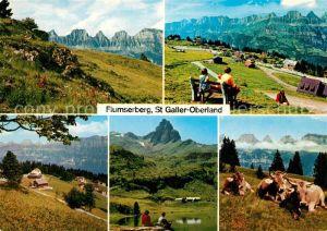 AK / Ansichtskarte Flumserberg_Bergheim St. Galler Oberland Kuehe Flumserberg Bergheim