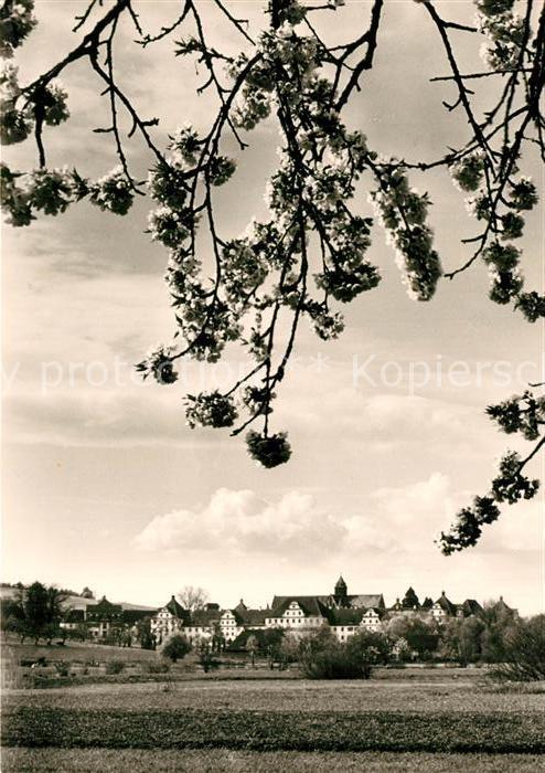 AK / Ansichtskarte Salem_Baden Blick ueber die Felder zum Schloss Salem_Baden