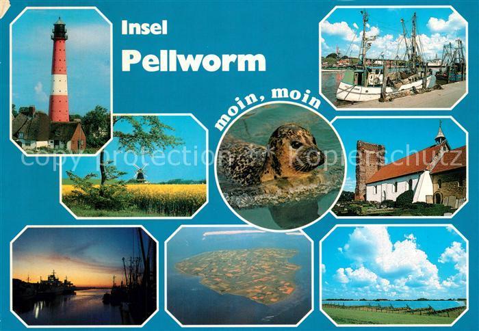 AK / Ansichtskarte Pellworm Leuchtturm Rapsfelder Seehund Hafen Fischkutter Landschaftspanorama Windmuehle Fliegeraufnahme Pellworm