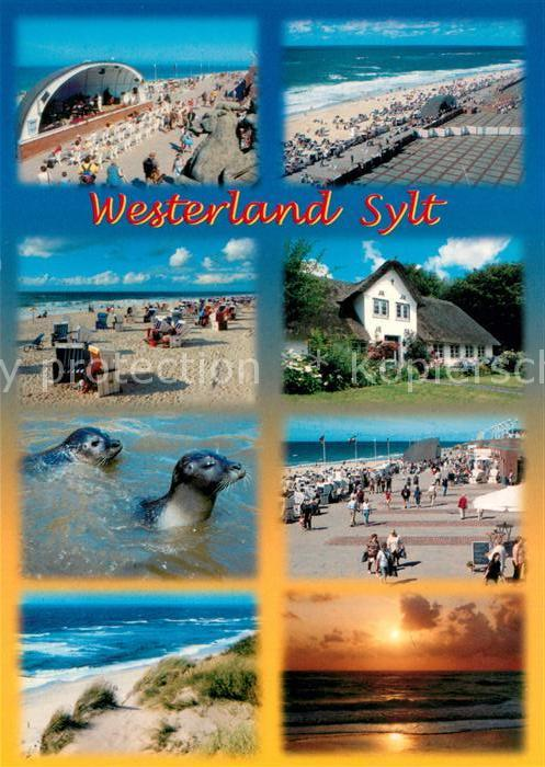 AK / Ansichtskarte Westerland_Sylt Konzertpavillon Promenade Strand Friesenhaus Seehunde Duenen Sonnenuntergang am Meer Westerland_Sylt